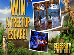 Win a Treetop Escape