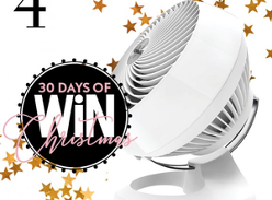 Win a Vornado Air Circulator