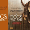 Win one of twenty-five DPs to A Dog's Way Home