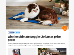 Win a Doggie Xmas Pack