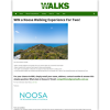 Win a Noosa Walking Experience For Two