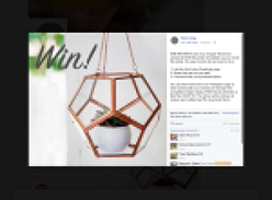 Win a set of Copper Terrariums!